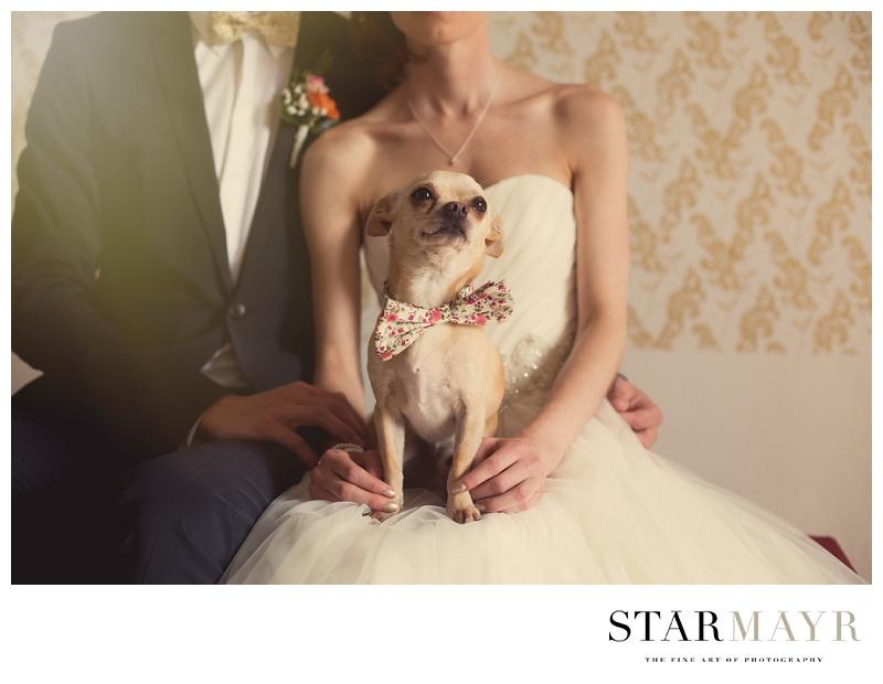 Starmayr, Hochzeitfotograf, Fotograf Linz,_0077