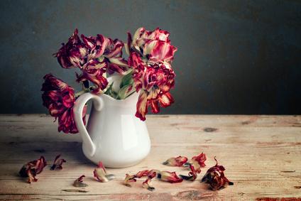 Blumen zum Valentinstag! Wirklich?